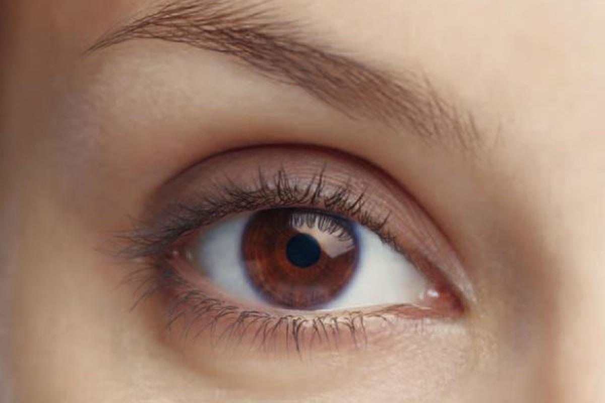 mahrt hoerning kontaktlinse mahrt und hoerning